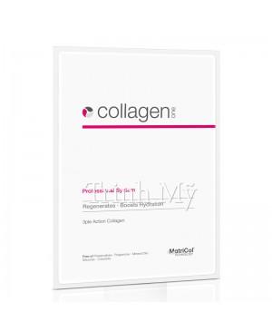 collagen_one